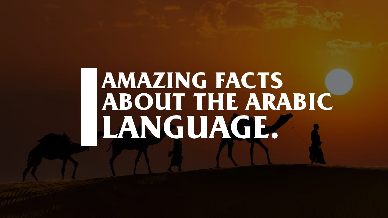 Amazing facts about Arabic.