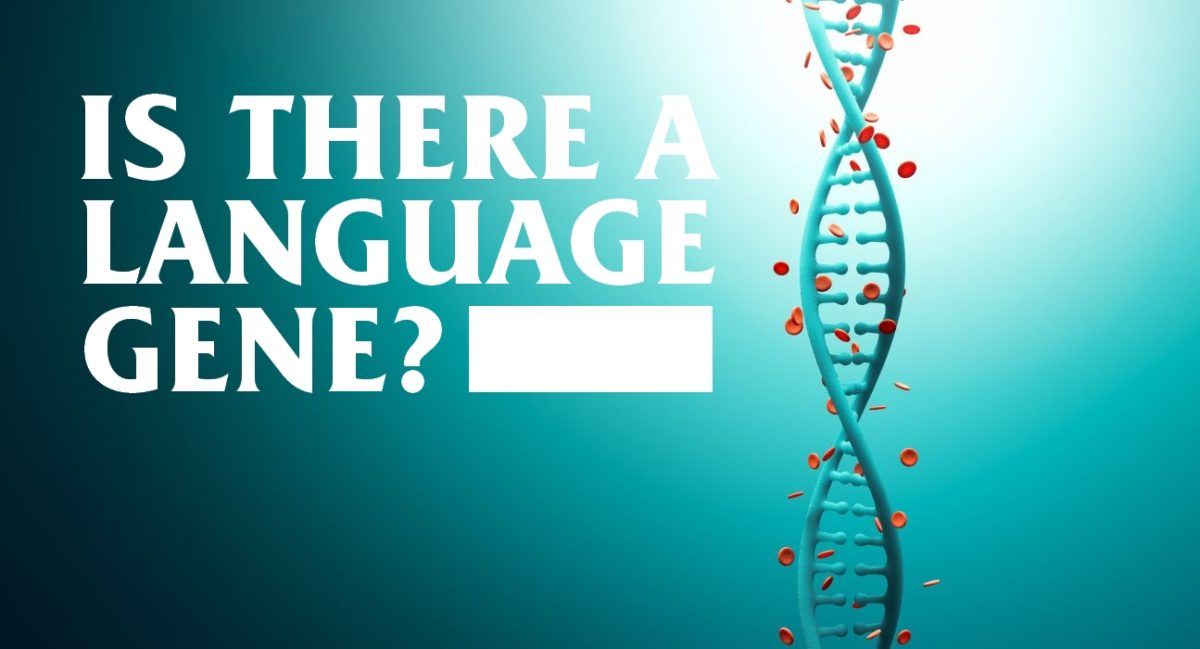 Our ability to speak is led down to our genes, a study finds.