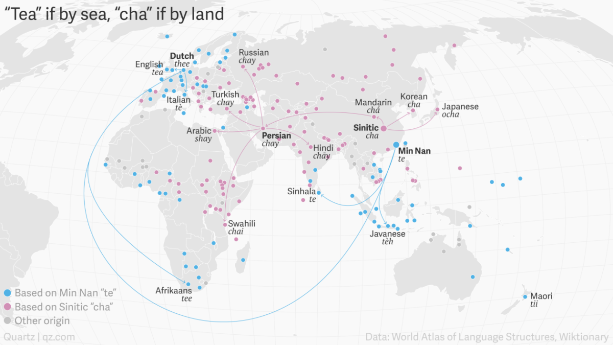Tea if by sea, Cha if by land: Why the world has only two words for tea.